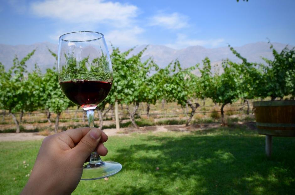 Chileläiset viinit yllättivät hinnallaan ja laadullaan. Piti ihan kotiin asti roudata muutama maistiaisputeli.